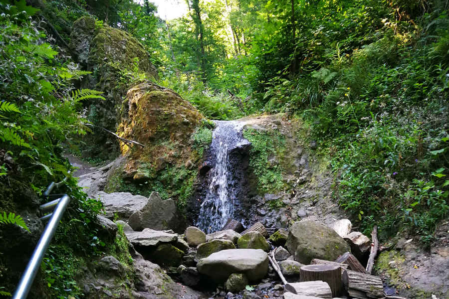 20 Oktober – Waldtour zur Rám-Schlucht und zum Rám-Berg im Pilis